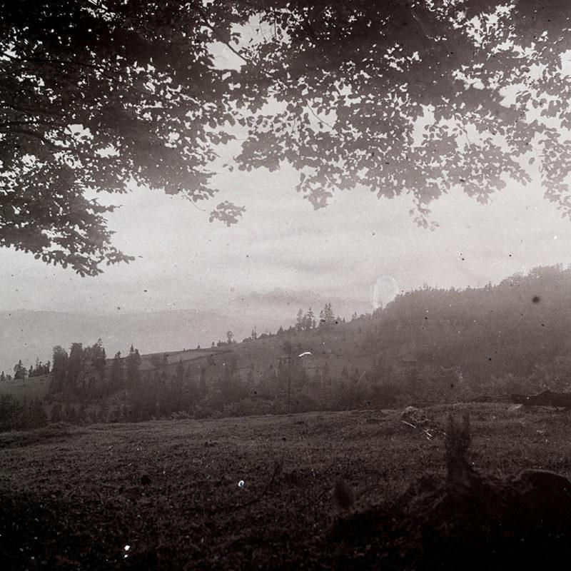 Krajobraz. Widok na zalesione wzgórza_Arch. PME N.4041_1