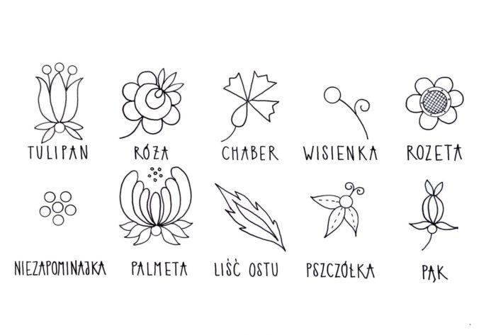 Rysunki charakterystycznych kwiatów ze wzorów haftów kaszubskich.