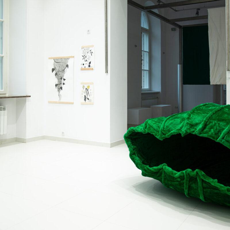 Zdjecie przedstawiające obiekt Pąk z wystawy Ikony. Zielony miękki kształt porzypominający muszlę w jasnej przestrzeni
