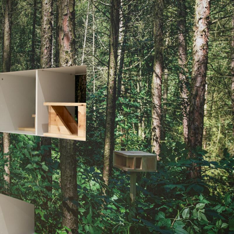 Ściana drzew. Fototapeta imitująca las. W ściacine wycięte otwory, w nich karminiki dla ptaków z naturalnego drewna.
